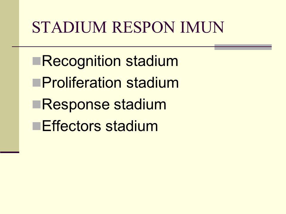 STADIUM RESPON IMUN Recognition stadium Proliferation stadium Response stadium Effectors stadium