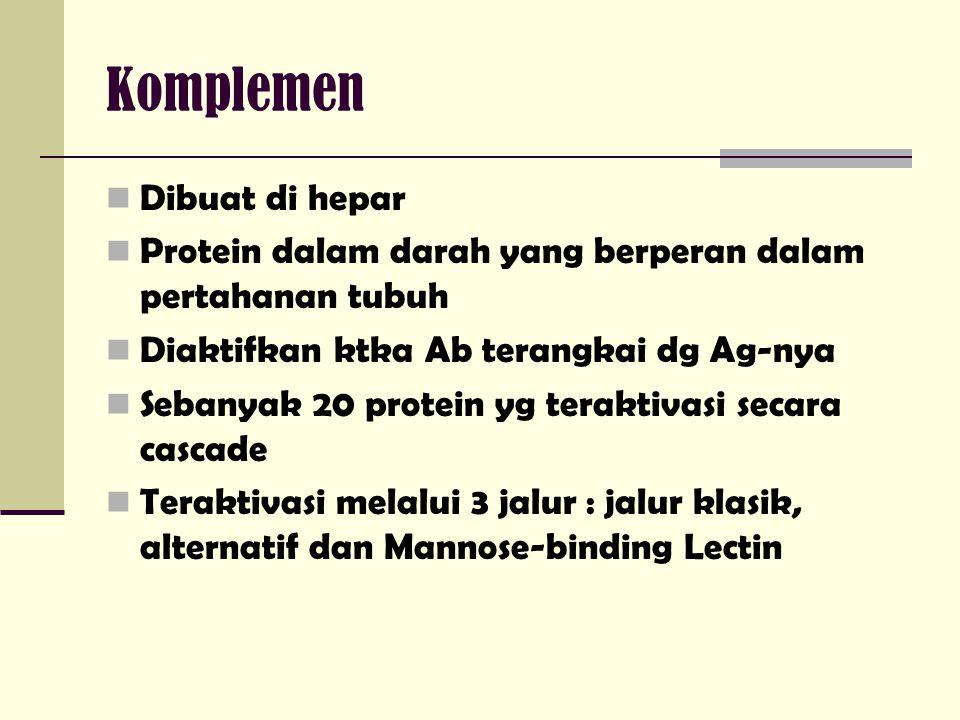 Komplemen Dibuat di hepar Protein dalam darah yang berperan dalam pertahanan tubuh Diaktifkan ktka Ab terangkai dg Ag-nya Sebanyak 20 protein yg terak