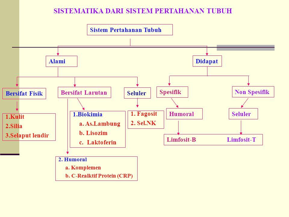 Sistem Pertahanan Tubuh Alami Didapat Bersifat Fisik Bersifat Larutan Seluler 1.Kulit 2.Silia 3.Selaput lendir 1.Biokimia a. As.Lambung b. Lisozim c.
