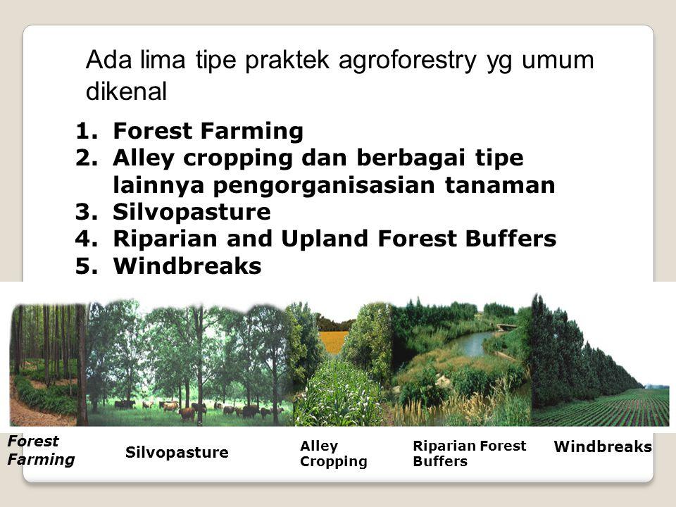 1.Forest Farming 2.Alley cropping dan berbagai tipe lainnya pengorganisasian tanaman 3.Silvopasture 4.Riparian and Upland Forest Buffers 5.Windbreaks