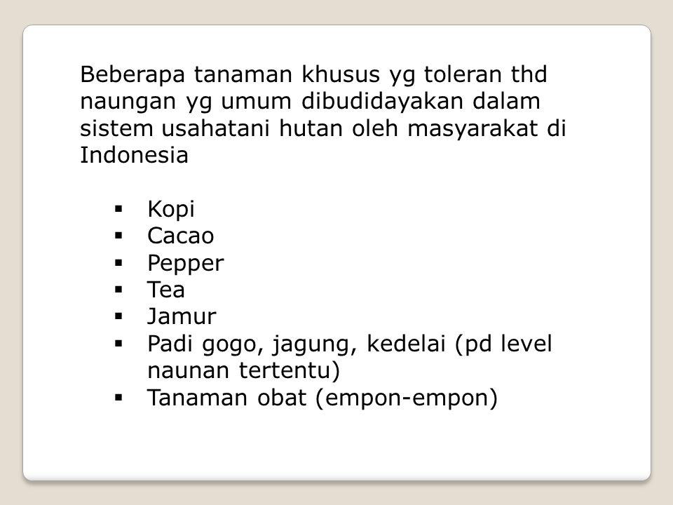  Kopi  Cacao  Pepper  Tea  Jamur  Padi gogo, jagung, kedelai (pd level naunan tertentu)  Tanaman obat (empon-empon) Beberapa tanaman khusus yg toleran thd naungan yg umum dibudidayakan dalam sistem usahatani hutan oleh masyarakat di Indonesia