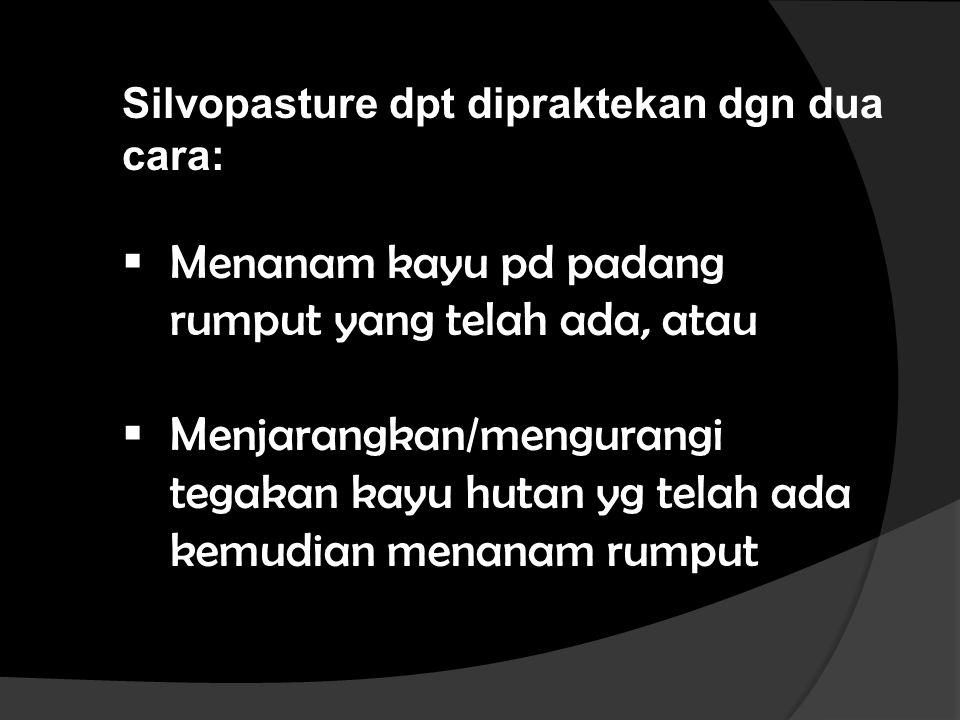 Silvopasture dpt dipraktekan dgn dua cara:  Menanam kayu pd padang rumput yang telah ada, atau  Menjarangkan/mengurangi tegakan kayu hutan yg telah