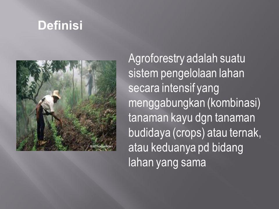 Agroforestry adalah suatu sistem pengelolaan lahan secara intensif yang menggabungkan (kombinasi) tanaman kayu dgn tanaman budidaya (crops) atau terna