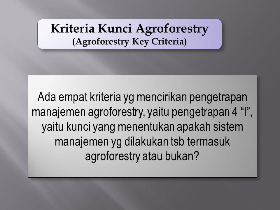 Kriteria Kunci Agroforestry (Agroforestry Key Criteria) Kriteria Kunci Agroforestry (Agroforestry Key Criteria) Ada empat kriteria yg mencirikan pengetrapan manajemen agroforestry, yaitu pengetrapan 4 I , yaitu kunci yang menentukan apakah sistem manajemen yg dilakukan tsb termasuk agroforestry atau bukan?