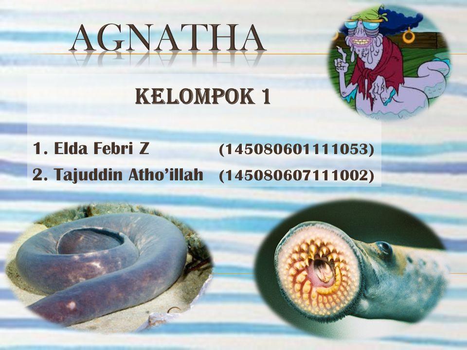 KELOMPOK 1 1. Elda Febri Z (145080601111053) 2. Tajuddin Atho'illah (145080607111002)