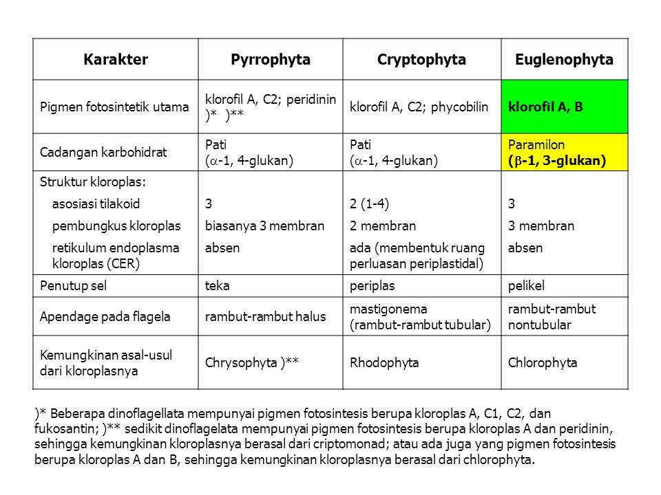 KarakterPyrrophytaCryptophytaEuglenophyta Pigmen fotosintetik utama klorofil A, C2; peridinin )* )** klorofil A, C2; phycobilinklorofil A, B Cadangan karbohidrat Pati (  -1, 4-glukan) Pati (  -1, 4-glukan) Paramilon (  -1, 3-glukan) Struktur kloroplas: asosiasi tilakoid32 (1-4)3 pembungkus kloroplasbiasanya 3 membran2 membran3 membran retikulum endoplasma kloroplas (CER) absenada (membentuk ruang perluasan periplastidal) absen Penutup seltekaperiplaspelikel Apendage pada flagelarambut-rambut halus mastigonema (rambut-rambut tubular) rambut-rambut nontubular Kemungkinan asal-usul dari kloroplasnya Chrysophyta )**RhodophytaChlorophyta )* Beberapa dinoflagellata mempunyai pigmen fotosintesis berupa kloroplas A, C1, C2, dan fukosantin; )** sedikit dinoflagelata mempunyai pigmen fotosintesis berupa kloroplas A dan peridinin, sehingga kemungkinan kloroplasnya berasal dari criptomonad; atau ada juga yang pigmen fotosintesis berupa kloroplas A dan B, sehingga kemungkinan kloroplasnya berasal dari chlorophyta.
