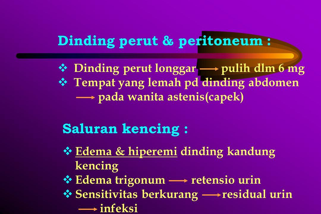 Dinding perut & peritoneum :  Dinding perut longgar pulih dlm 6 mg  Tempat yang lemah pd dinding abdomen pada wanita astenis(capek) Saluran kencing