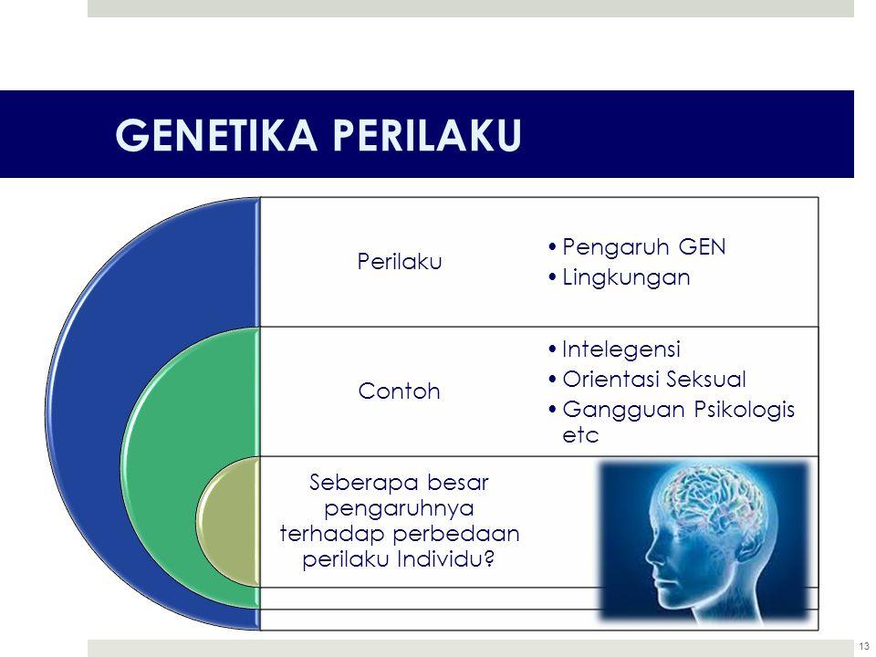 GENETIKA PERILAKU Perilaku Contoh Seberapa besar pengaruhnya terhadap perbedaan perilaku Individu? Pengaruh GEN Lingkungan Intelegensi Orientasi Seksu