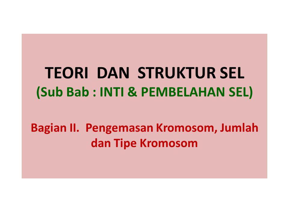 TEORI DAN STRUKTUR SEL (Sub Bab : INTI & PEMBELAHAN SEL) Bagian II. Pengemasan Kromosom, Jumlah dan Tipe Kromosom