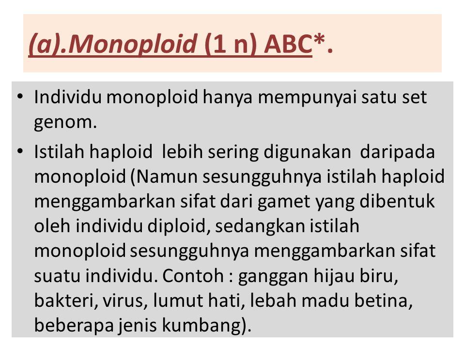 (a).Monoploid (1 n) ABC*. Individu monoploid hanya mempunyai satu set genom. Istilah haploid lebih sering digunakan daripada monoploid (Namun sesunggu