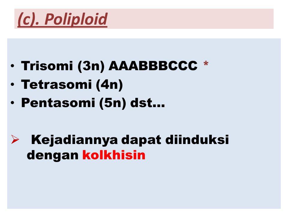 (c). Poliploid Trisomi (3n) AAABBBCCC * Tetrasomi (4n) Pentasomi (5n) dst…  Kejadiannya dapat diinduksi dengan kolkhisin