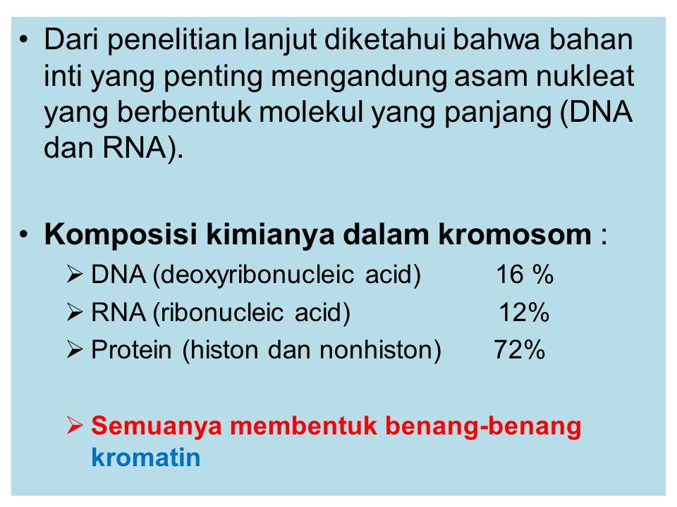 Dari penelitian lanjut diketahui bahwa bahan inti yang penting mengandung asam nukleat yang berbentuk molekul yang panjang (DNA dan RNA).