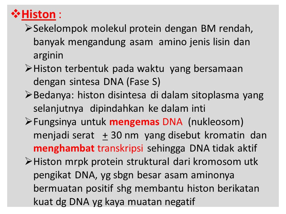  Histon :  Sekelompok molekul protein dengan BM rendah, banyak mengandung asam amino jenis lisin dan arginin  Histon terbentuk pada waktu yang bers