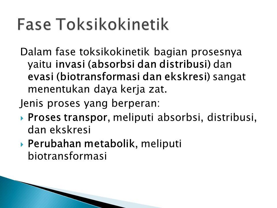 Dalam fase toksikokinetik bagian prosesnya yaitu invasi (absorbsi dan distribusi) dan evasi (biotransformasi dan ekskresi) sangat menentukan daya kerj