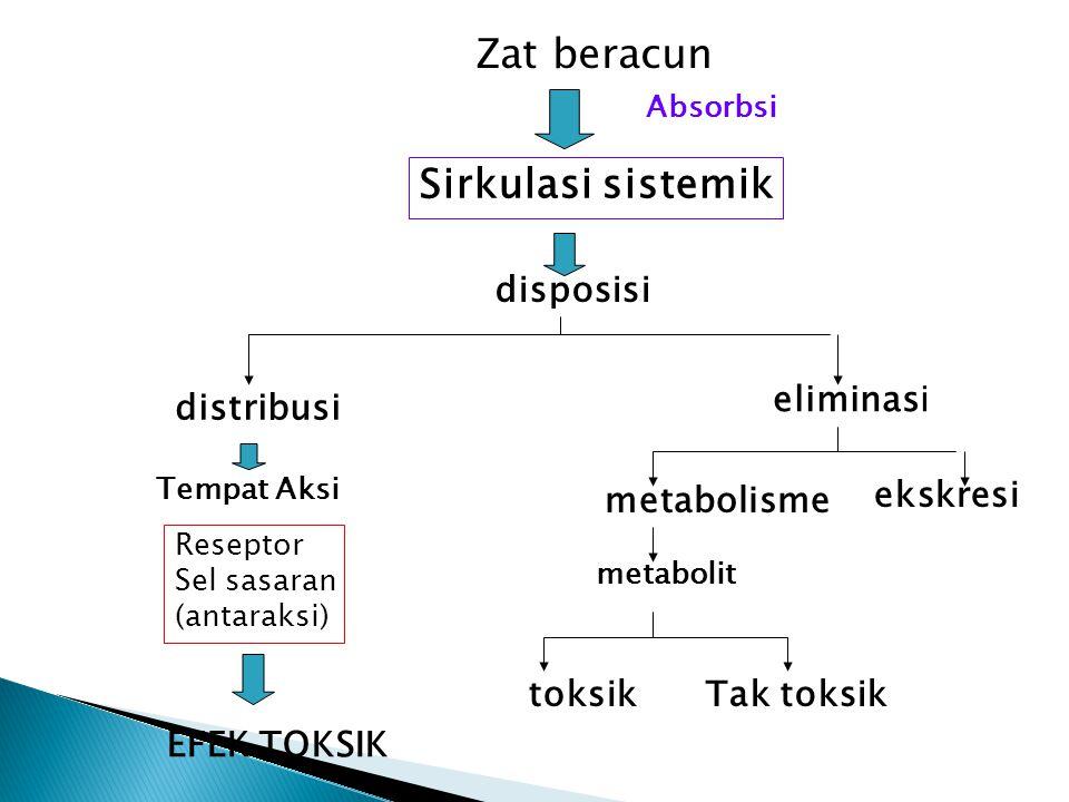 Zat beracun Absorbsi Sirkulasi sistemik disposisi distribusi Tempat Aksi Reseptor Sel sasaran (antaraksi) EFEK TOKSIK eliminasi metabolisme ekskresi m