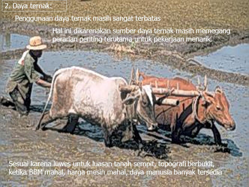 Keuntungan penggunaan daya ternak: murah, cocok utk daya tarik, besarnya unit mudah diatur, tarikan baik pada tanah pasir atau basah.
