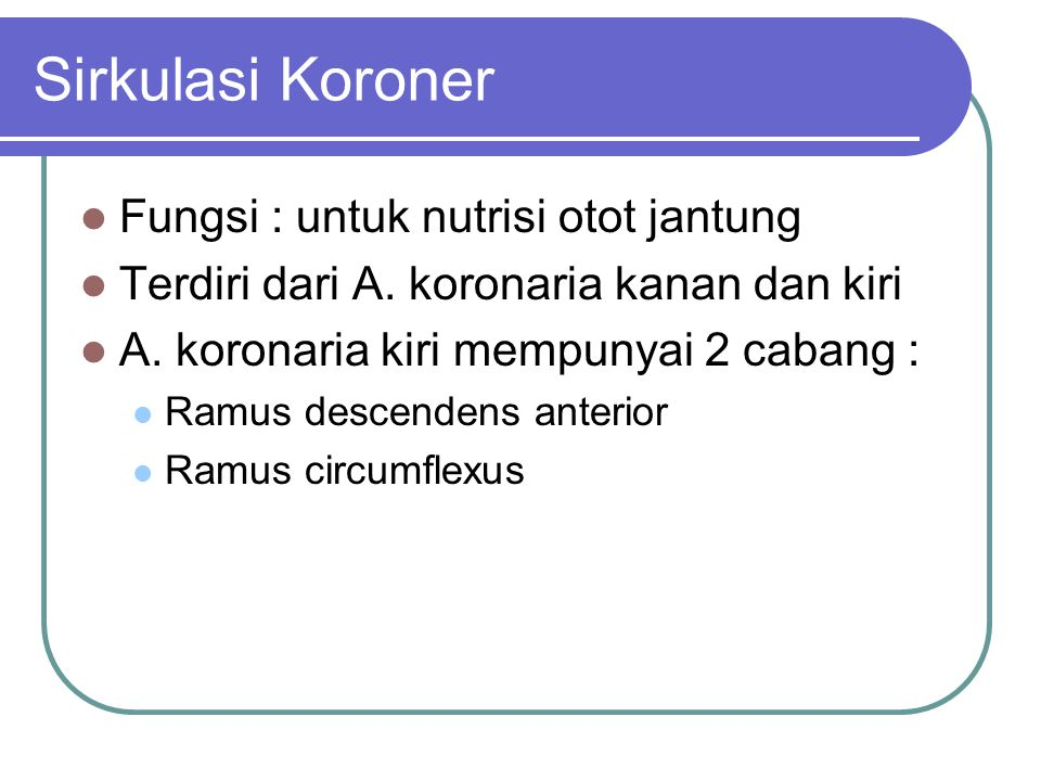 Sirkulasi Koroner Fungsi : untuk nutrisi otot jantung Terdiri dari A. koronaria kanan dan kiri A. koronaria kiri mempunyai 2 cabang : Ramus descendens