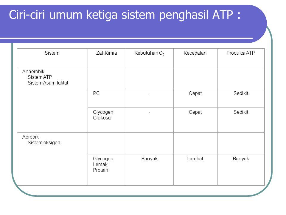 Ciri-ciri umum ketiga sistem penghasil ATP : SistemZat KimiaKebutuhan O 2 KecepatanProduksi ATP Anaerobik Sistem ATP Sistem Asam laktat PC-CepatSediki