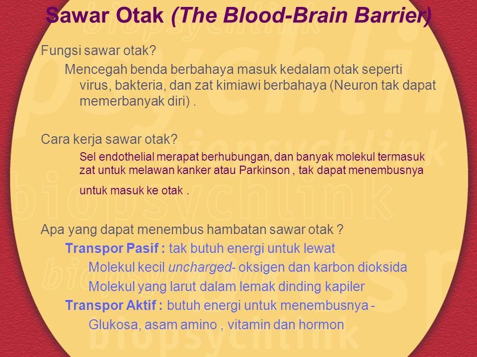 Sawar Otak (The Blood-Brain Barrier) Fungsi sawar otak? Mencegah benda berbahaya masuk kedalam otak seperti virus, bakteria, dan zat kimiawi berbahaya