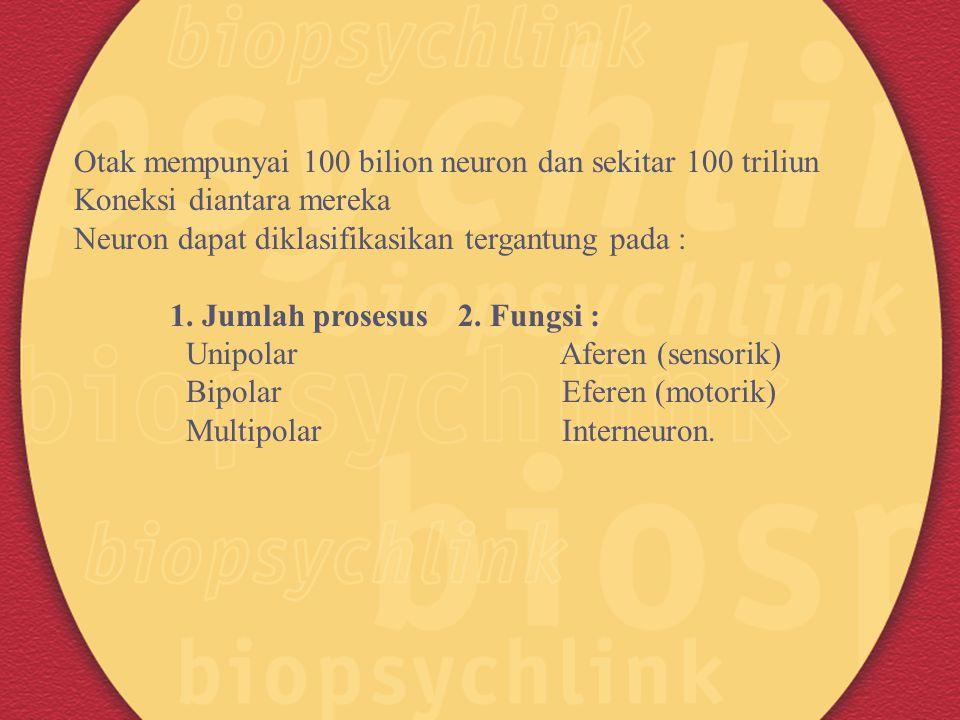 Otak mempunyai 100 bilion neuron dan sekitar 100 triliun Koneksi diantara mereka Neuron dapat diklasifikasikan tergantung pada : 1. Jumlah prosesus 2.