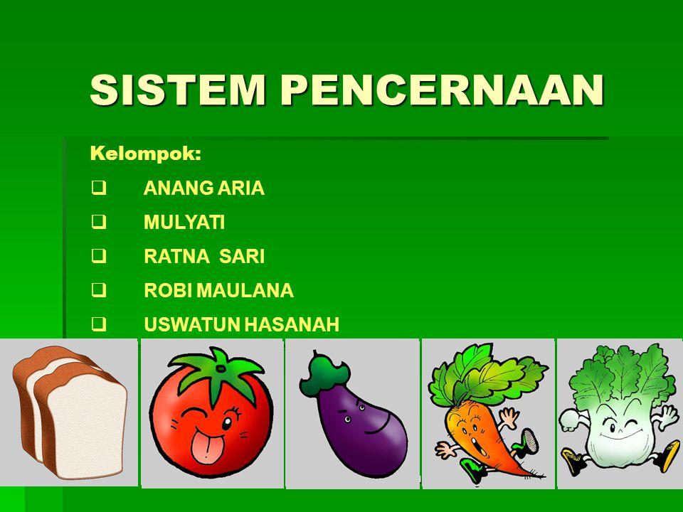Zat Makanan : Karbohidrat Lemak Protein Air Garam Mineral Vitamin MAKANAN Karbohidrat : 1 gr KH = 4 kalori Protein : 1 gr Protein = 4 kalori Lemak : 1 gr lemak = 9 kalori SUMBER KALORI sistem pencernaan2