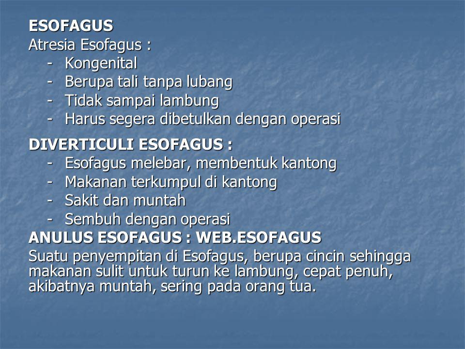 ESOFAGUS Atresia Esofagus : -Kongenital -Berupa tali tanpa lubang -Tidak sampai lambung -Harus segera dibetulkan dengan operasi DIVERTICULI ESOFAGUS :