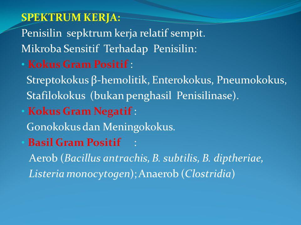 SPEKTRUM KERJA: Penisilin sepktrum kerja relatif sempit. Mikroba Sensitif Terhadap Penisilin: Kokus Gram Positif : Streptokokus β-hemolitik, Enterokok