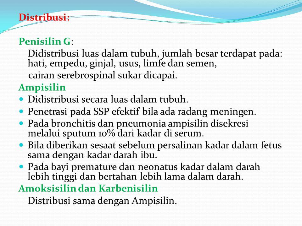 Distribusi: Penisilin G: Didistribusi luas dalam tubuh, jumlah besar terdapat pada: hati, empedu, ginjal, usus, limfe dan semen, cairan serebrospinal