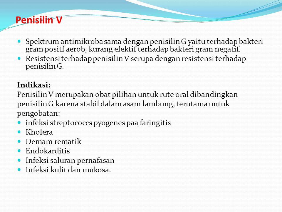 Penisilin V Spektrum antimikroba sama dengan penisilin G yaitu terhadap bakteri gram positf aerob, kurang efektif terhadap bakteri gram negatif. Resis