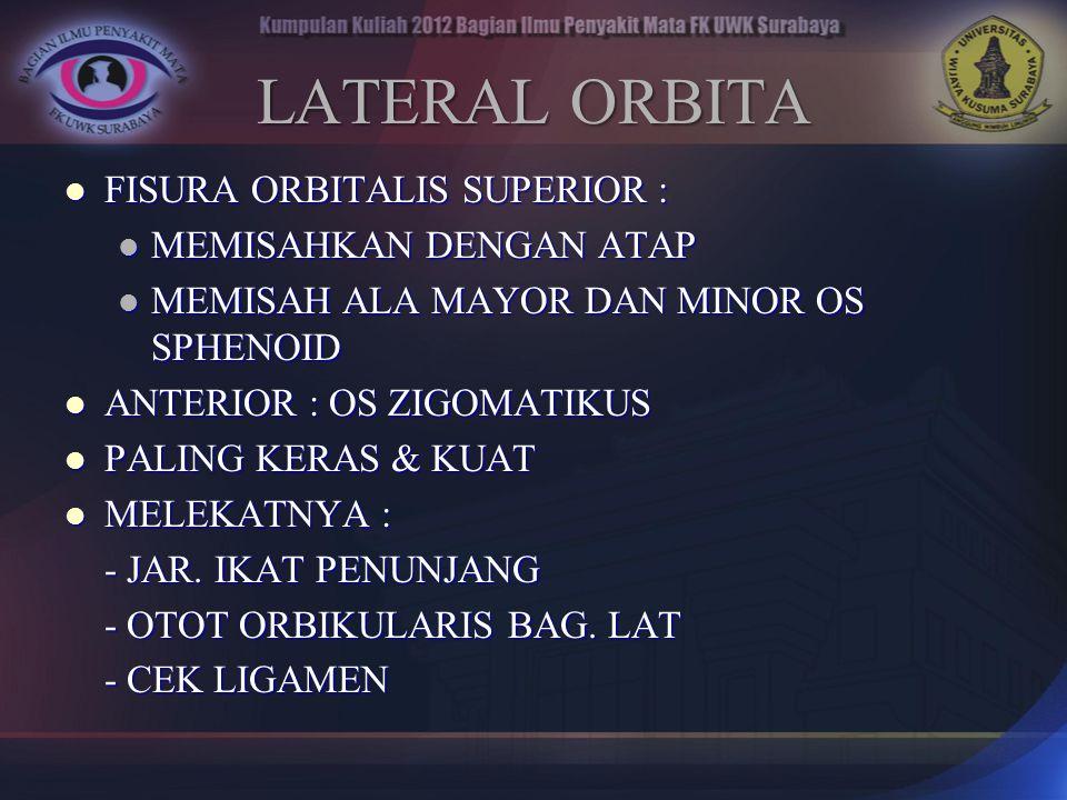 LATERAL ORBITA FISURA ORBITALIS SUPERIOR : FISURA ORBITALIS SUPERIOR : MEMISAHKAN DENGAN ATAP MEMISAHKAN DENGAN ATAP MEMISAH ALA MAYOR DAN MINOR OS SP