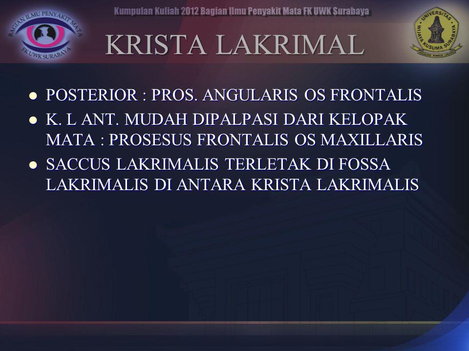 KRISTA LAKRIMAL POSTERIOR : PROS. ANGULARIS OS FRONTALIS POSTERIOR : PROS. ANGULARIS OS FRONTALIS K. L ANT. MUDAH DIPALPASI DARI KELOPAK MATA : PROSES