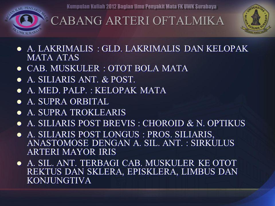 CABANG ARTERI OFTALMIKA A. LAKRIMALIS : GLD. LAKRIMALIS DAN KELOPAK MATA ATAS A. LAKRIMALIS : GLD. LAKRIMALIS DAN KELOPAK MATA ATAS CAB. MUSKULER : OT