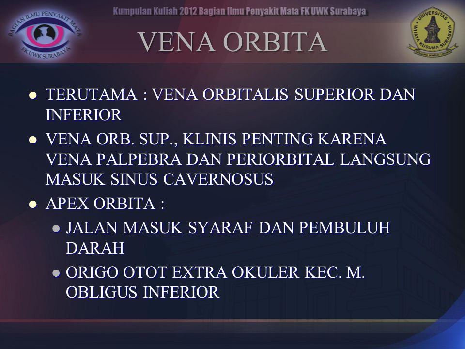 VENA ORBITA TERUTAMA : VENA ORBITALIS SUPERIOR DAN INFERIOR TERUTAMA : VENA ORBITALIS SUPERIOR DAN INFERIOR VENA ORB. SUP., KLINIS PENTING KARENA VENA