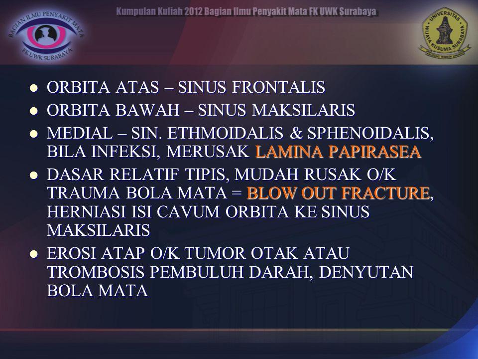 ORBITA ATAS – SINUS FRONTALIS ORBITA ATAS – SINUS FRONTALIS ORBITA BAWAH – SINUS MAKSILARIS ORBITA BAWAH – SINUS MAKSILARIS MEDIAL – SIN. ETHMOIDALIS