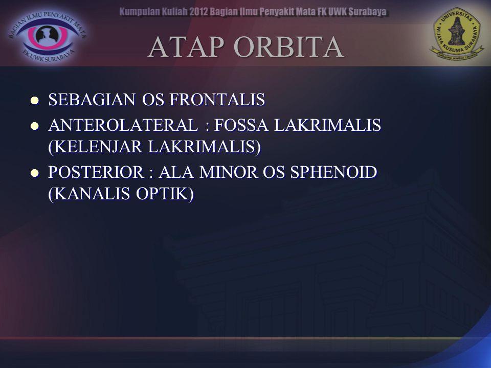 ATAP ORBITA SEBAGIAN OS FRONTALIS SEBAGIAN OS FRONTALIS ANTEROLATERAL : FOSSA LAKRIMALIS (KELENJAR LAKRIMALIS) ANTEROLATERAL : FOSSA LAKRIMALIS (KELEN