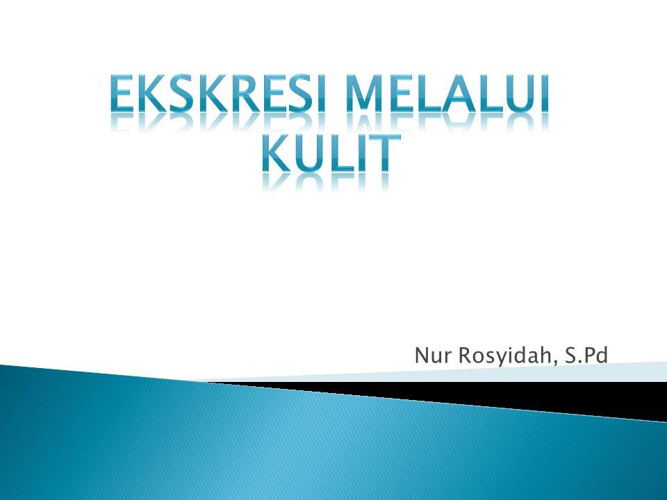 Keringat manusia tediri dari : - Air - Garam - Mineral - Senyawa N - Sisa metabolisme sel - Asam