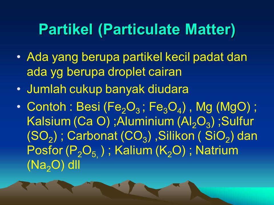 Partikel (Particulate Matter) Ada yang berupa partikel kecil padat dan ada yg berupa droplet cairan Jumlah cukup banyak diudara Contoh : Besi (Fe 2 O