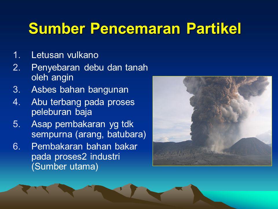 Sumber Pencemaran Partikel 1.Letusan vulkano 2.Penyebaran debu dan tanah oleh angin 3.Asbes bahan bangunan 4.Abu terbang pada proses peleburan baja 5.