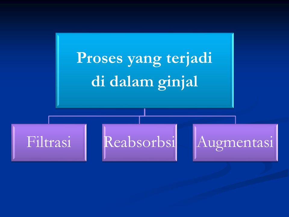 Proses yang terjadi di dalam ginjal FiltrasiReabsorbsiAugmentasi