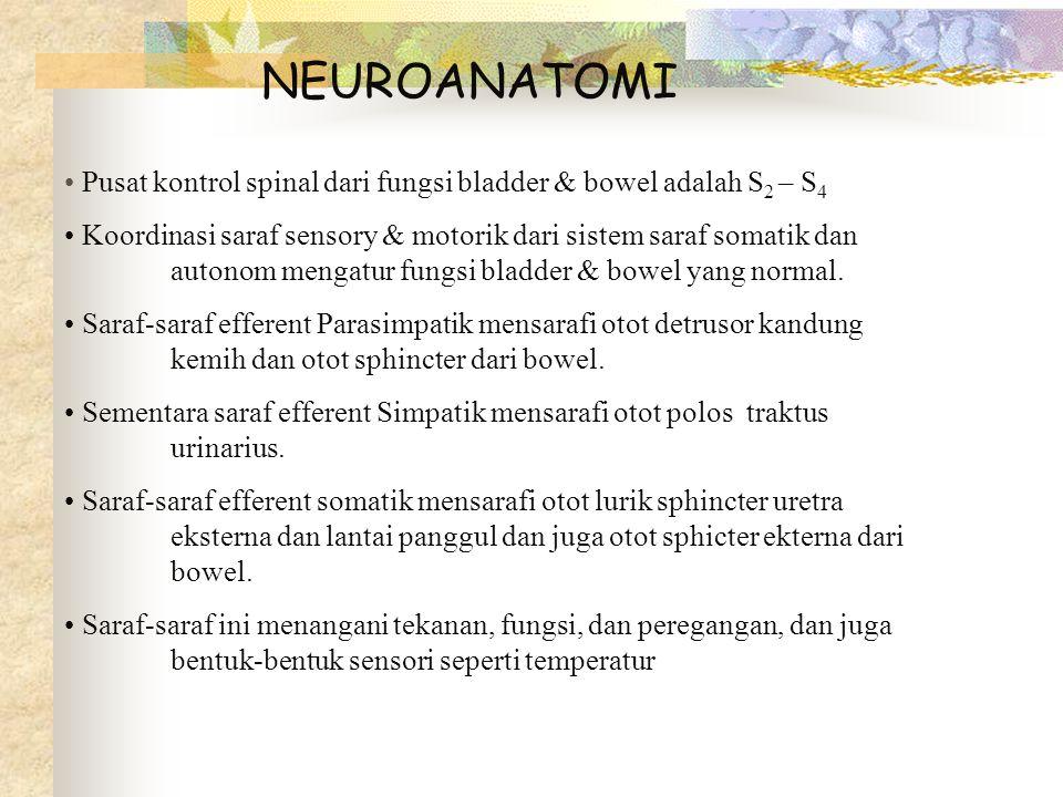 NEUROANATOMI Pusat kontrol spinal dari fungsi bladder & bowel adalah S 2 – S 4 Koordinasi saraf sensory & motorik dari sistem saraf somatik dan autono