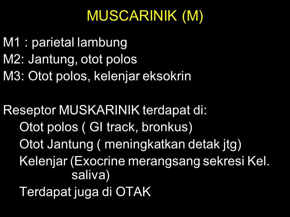 MUSCARINIK (M) M1 : parietal lambung M2: Jantung, otot polos M3: Otot polos, kelenjar eksokrin Reseptor MUSKARINIK terdapat di: Otot polos ( GI track,