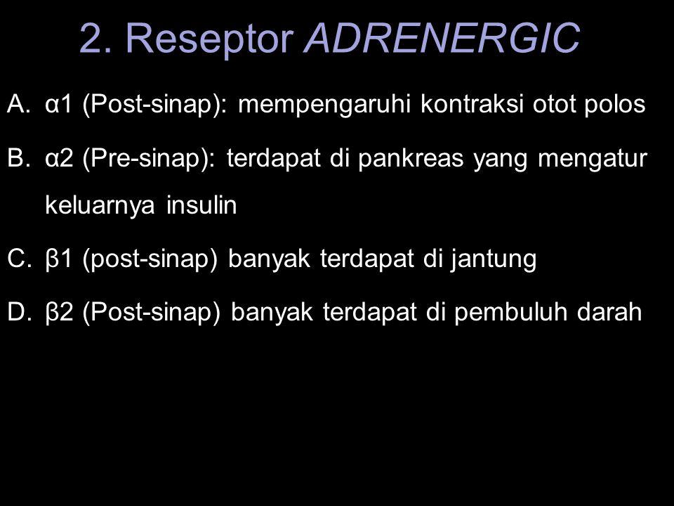 2. Reseptor ADRENERGIC A.α1 (Post-sinap): mempengaruhi kontraksi otot polos B.α2 (Pre-sinap): terdapat di pankreas yang mengatur keluarnya insulin C.β