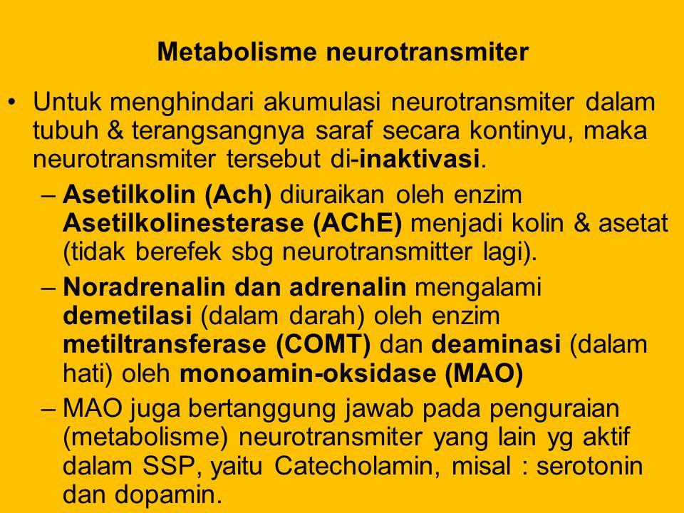 Metabolisme neurotransmiter Untuk menghindari akumulasi neurotransmiter dalam tubuh & terangsangnya saraf secara kontinyu, maka neurotransmiter terseb