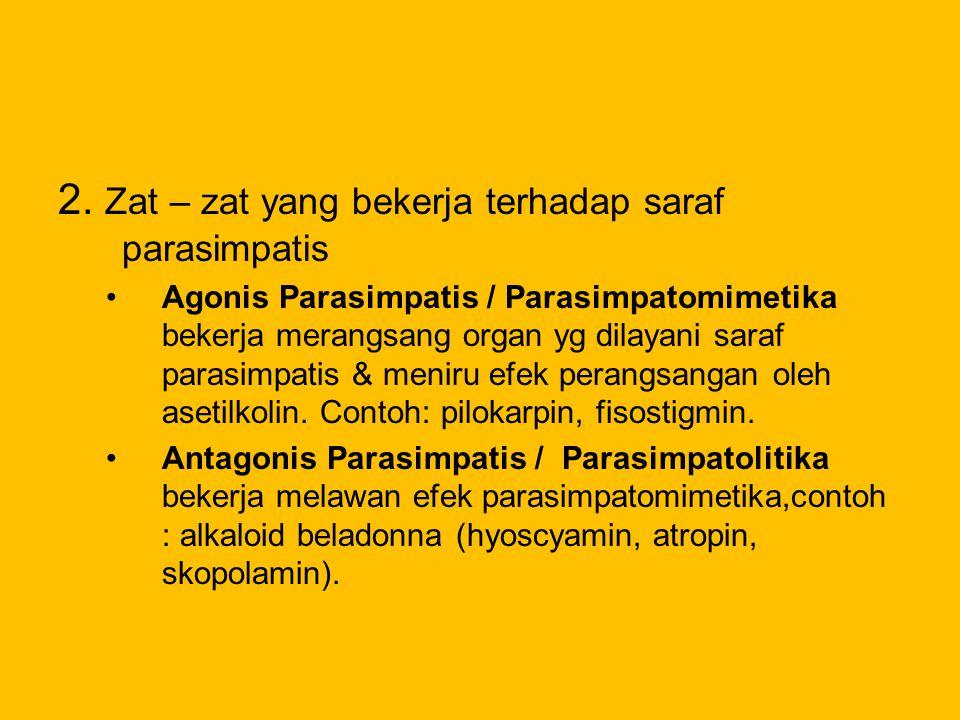 2. Zat – zat yang bekerja terhadap saraf parasimpatis Agonis Parasimpatis / Parasimpatomimetika bekerja merangsang organ yg dilayani saraf parasimpati