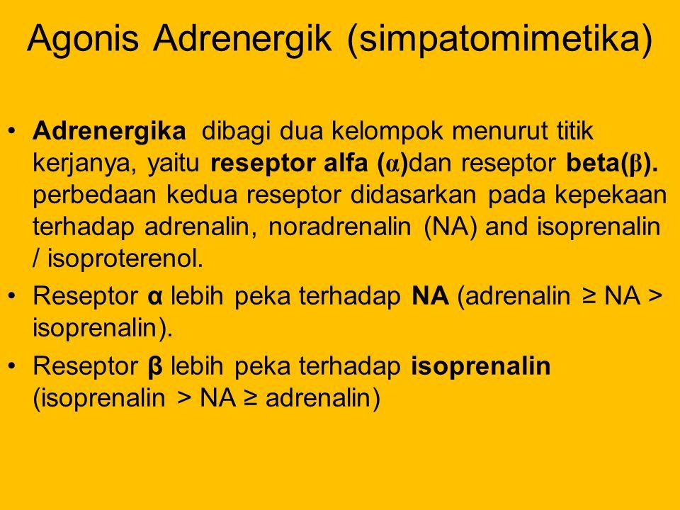 Agonis Adrenergik (simpatomimetika) Adrenergika dibagi dua kelompok menurut titik kerjanya, yaitu reseptor alfa ( α )dan reseptor beta( β ). perbedaan