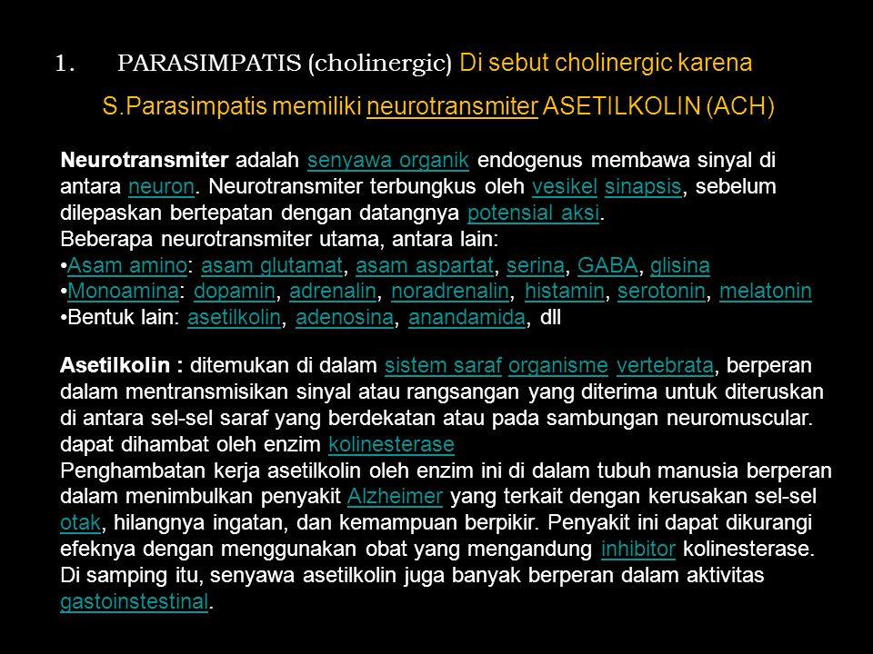 1. PARASIMPATIS (cholinergic) Di sebut cholinergic karena S.Parasimpatis memiliki neurotransmiter ASETILKOLIN (ACH) Neurotransmiter adalah senyawa org