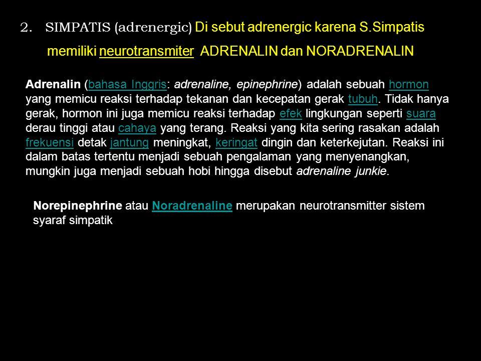2. SIMPATIS (adrenergic) Di sebut adrenergic karena S.Simpatis memiliki neurotransmiter ADRENALIN dan NORADRENALIN Adrenalin (bahasa Inggris: adrenali