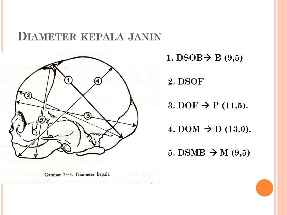 D IAMETER KEPALA JANIN 1. DSOB  B (9,5) 2. DSOF 3. DOF  P (11,5). 4. DOM  D (13.0). 5. DSMB  M (9,5)
