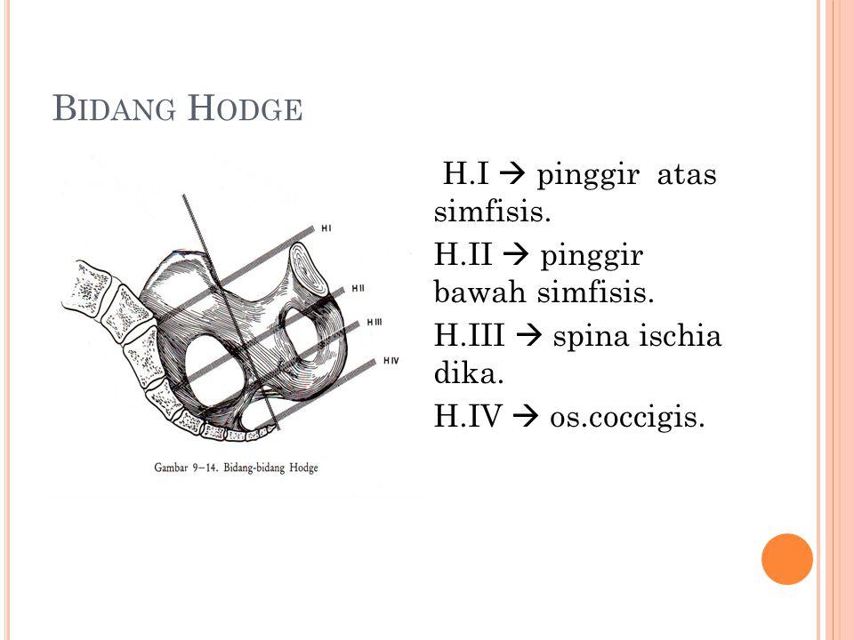B IDANG H ODGE H.I  pinggir atas simfisis. H.II  pinggir bawah simfisis. H.III  spina ischia dika. H.IV  os.coccigis.