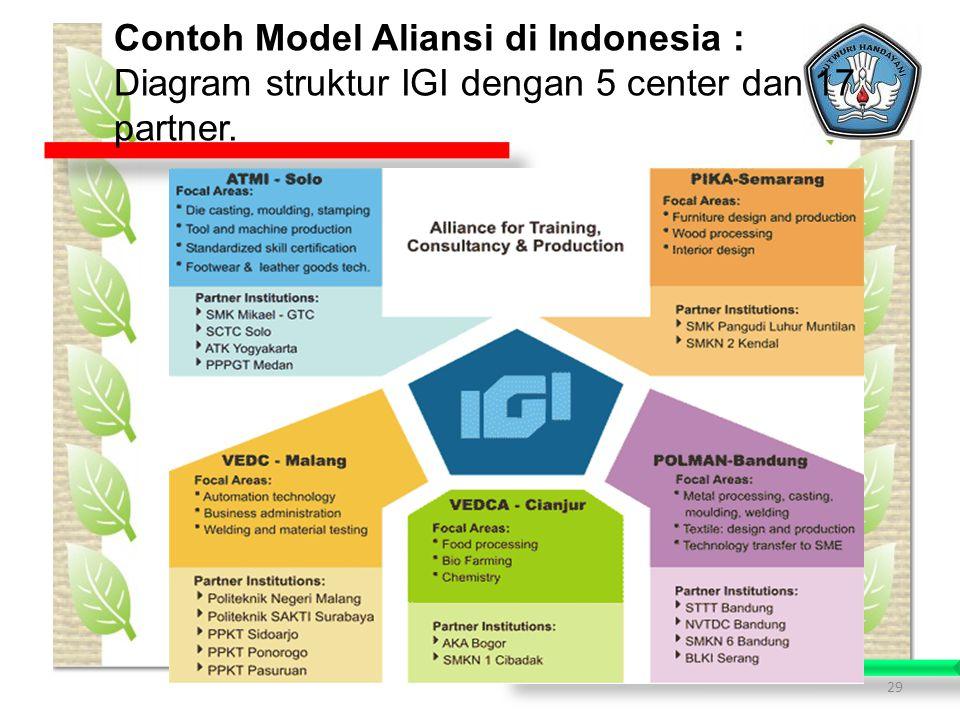 29 Contoh Model Aliansi di Indonesia : Diagram struktur IGI dengan 5 center dan 17 partner.
